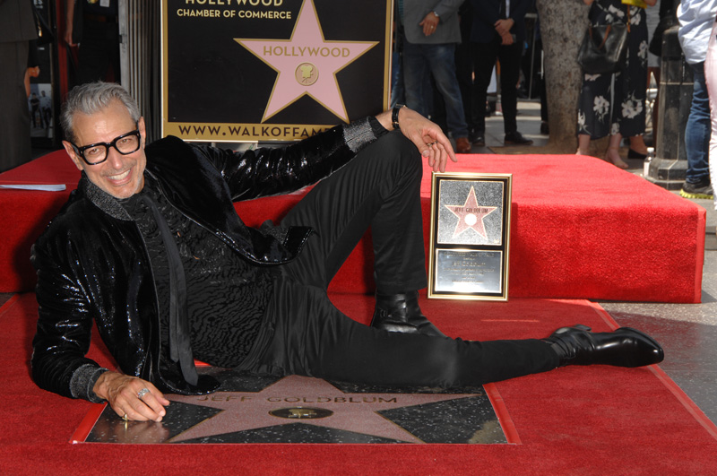 Hollywood Chamber of Commerce honors Jeff Goldblum with Walk of Fame Star